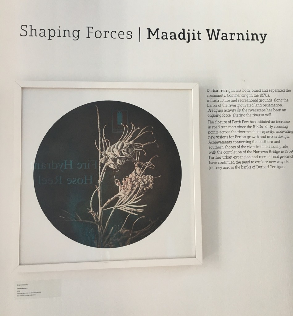 Shaping Forces / Maadjit Warniny exhibition heading