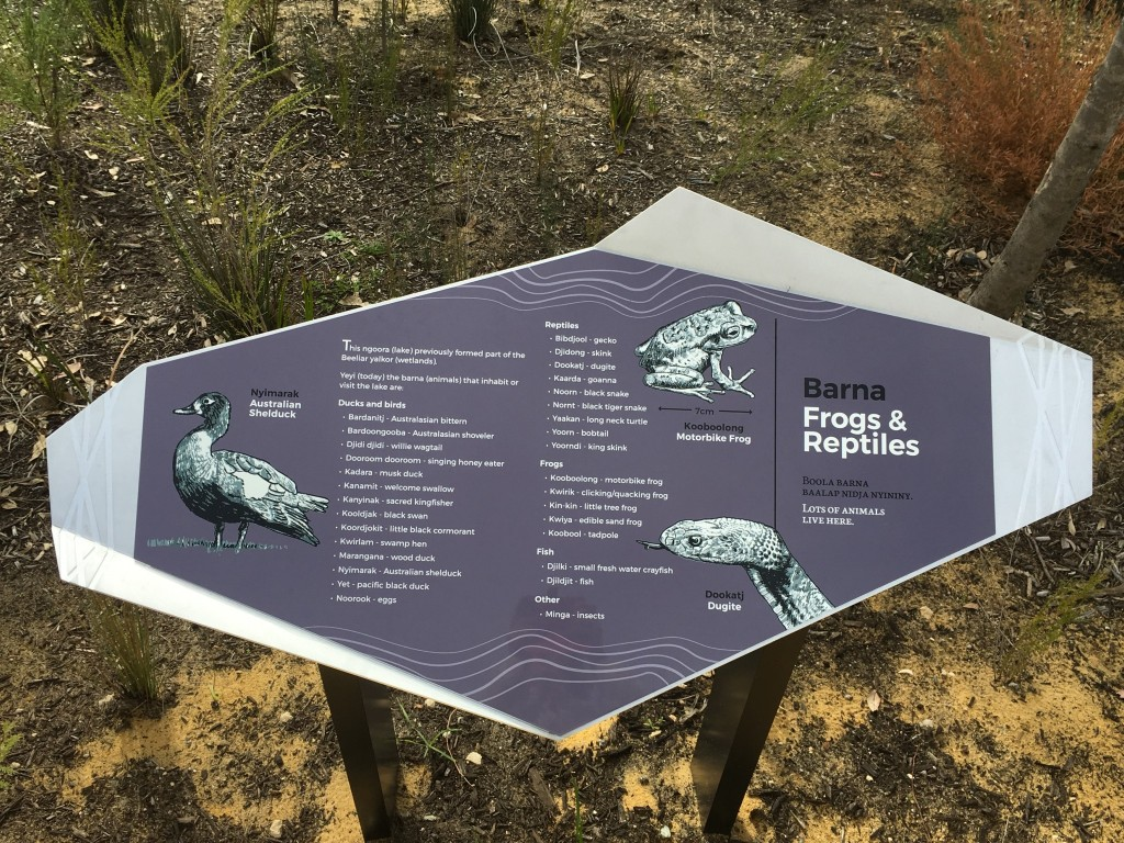 Barna / Frogs and Animals sign